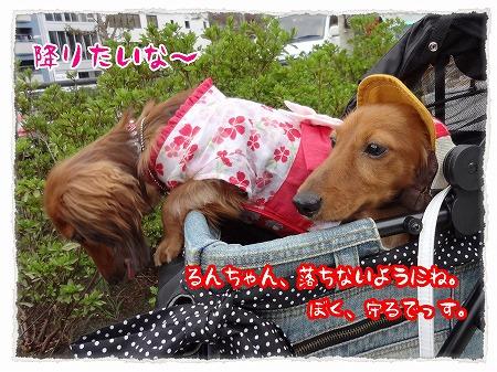 2012_8_6_2.jpg