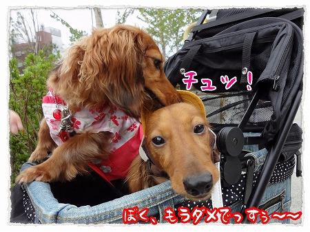 2012_8_6_7.jpg
