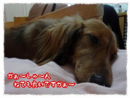 2012_9_10_.jpg