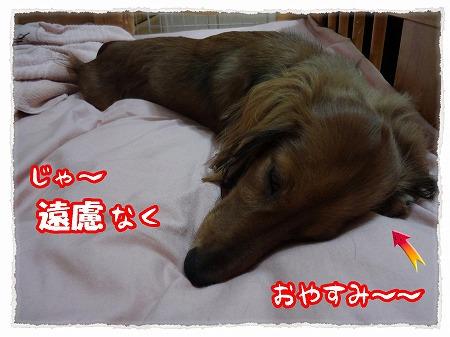 2012_9_10_2.jpg