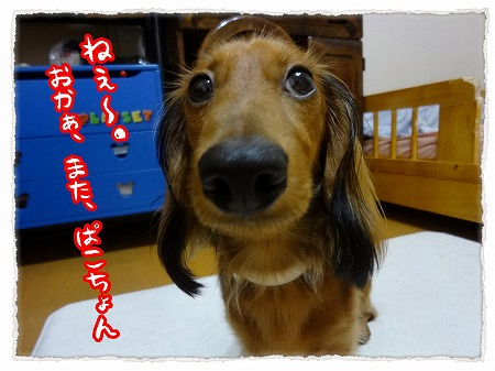 2012_9_13_1.jpg