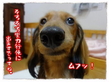 2012_9_13_3.jpg