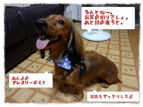 2012_9_15_2.jpg