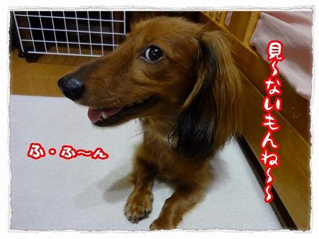 2012_9_19_5.jpg