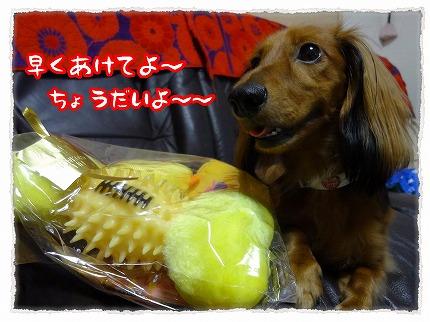 2012_9_1_2.jpg