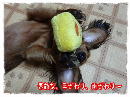 2012_9_1_5.jpg