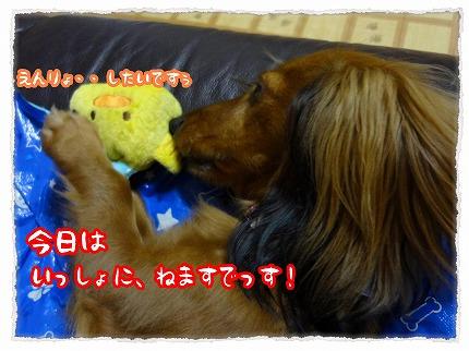 2012_9_1_7.jpg