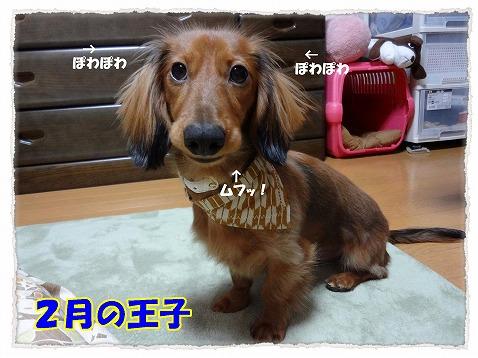 2012_9_20_1.jpg