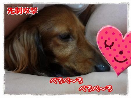 2012_9_21_2.jpg