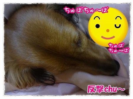 2012_9_21_3.jpg