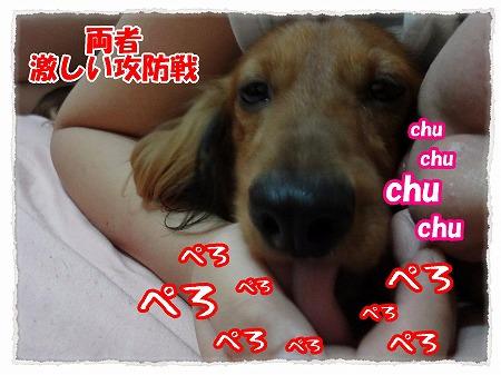 2012_9_21_4.jpg
