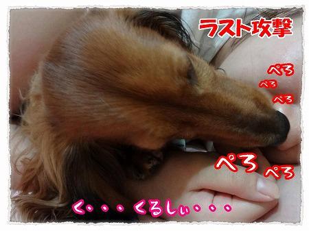 2012_9_21_5.jpg