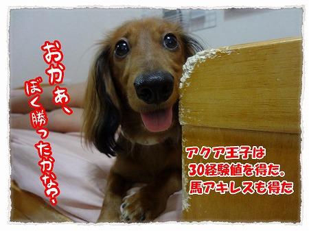 2012_9_21_6.jpg