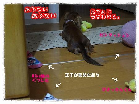 2012_9_22_6.jpg