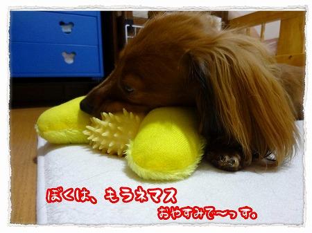 2012_9_22_7.jpg