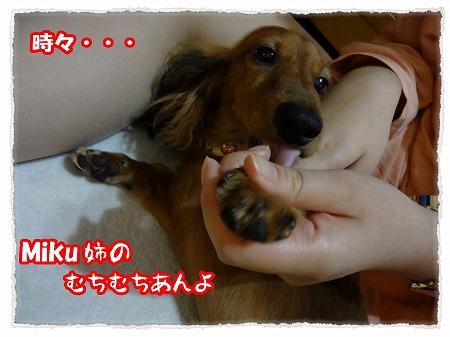 2012_9_24_6.jpg