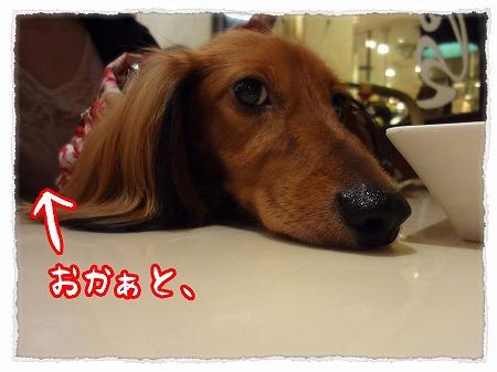 2012_9_24_7.jpg