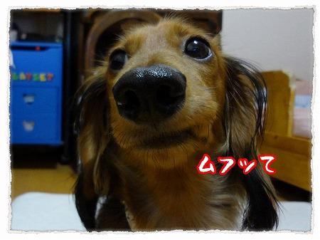 2012_9_28_10.jpg