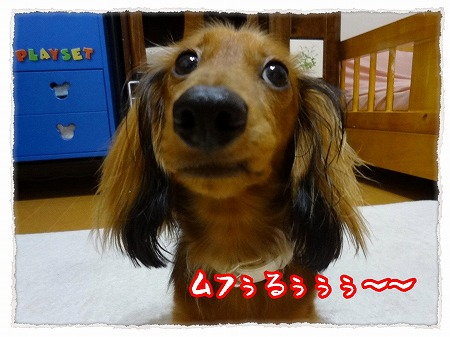 2012_9_28_9.jpg