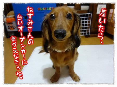 2012_9_29_3.jpg
