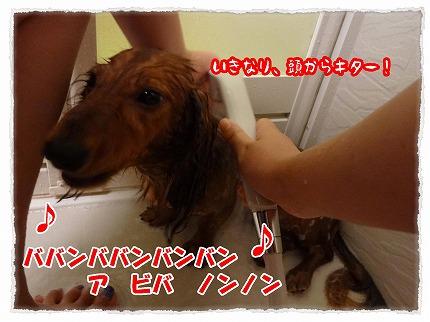 2012_9_3_1.jpg