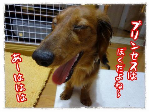 2012_9_7_2.jpg