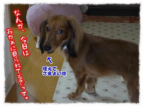 2012_9_8_1.jpg