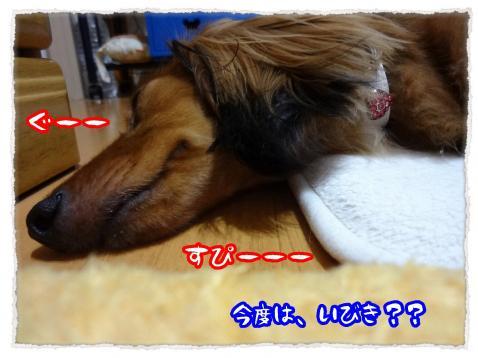 2012_convert_20120626232938.jpg