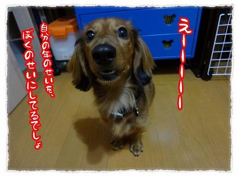2013_1_13_2.jpg