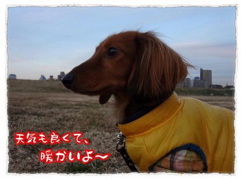 2013_1_14_3.jpg