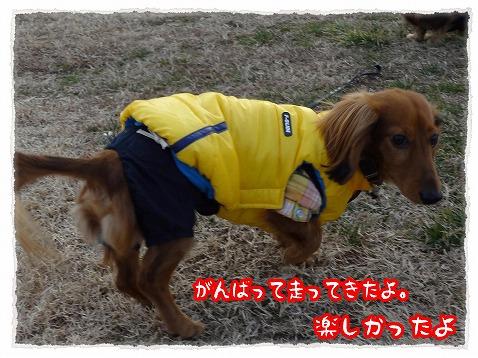 2013_1_14_4.jpg