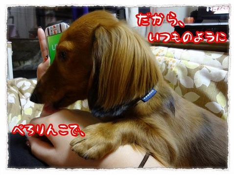 2013_1_14_5.jpg