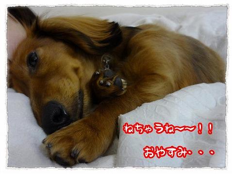 2013_1_14_6.jpg
