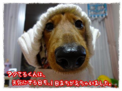 2013_1_16_2.jpg