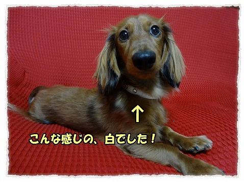 2013_1_18_1.jpg