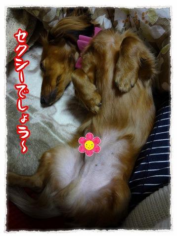 2013_1_18_5.jpg