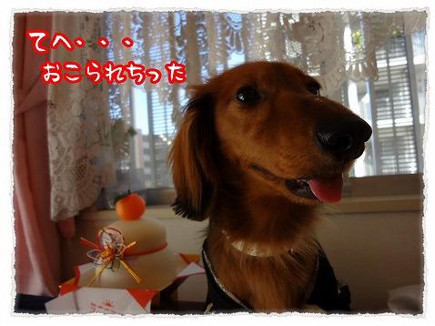 2013_1_1_2.jpg