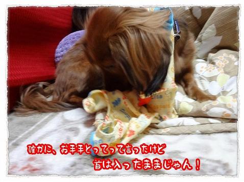 2013_1_20_2.jpg