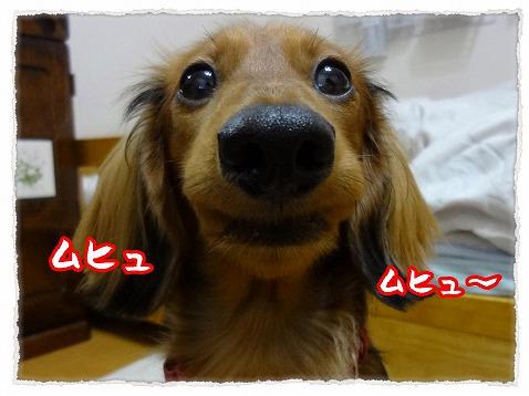 2013_1_23_4.jpg