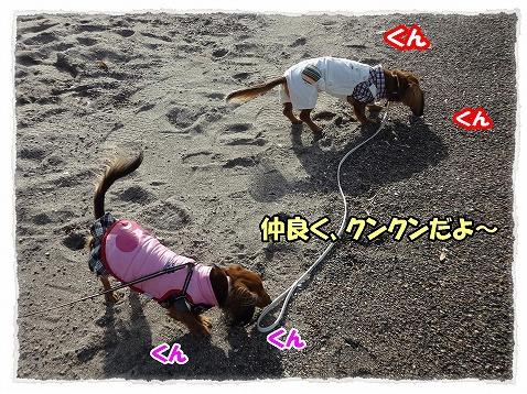 2013_1_24_6.jpg