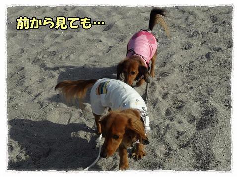 2013_1_24_7.jpg