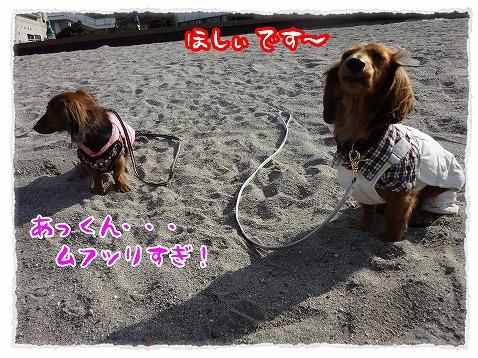 2013_1_25_3.jpg