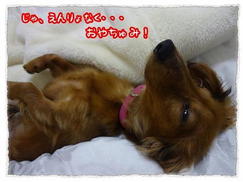 2013_1_31_6.jpg