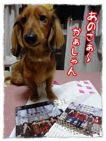 2013_1_3_8.jpg