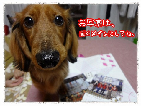 2013_1_3_9.jpg