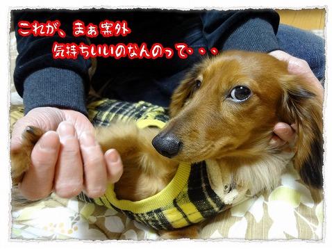 2013_1_4_2.jpg