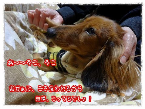 2013_1_4_3.jpg