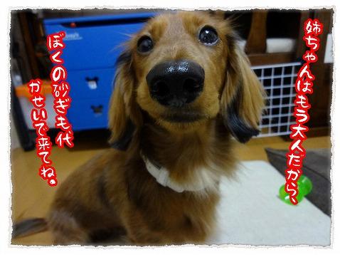 2013_1_5_4.jpg