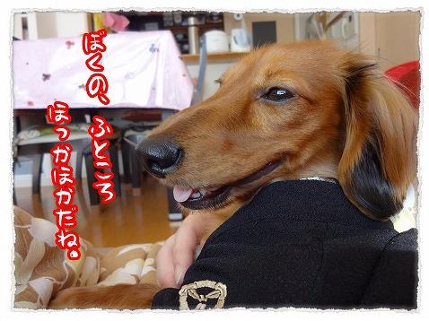 2013_1_6_3.jpg