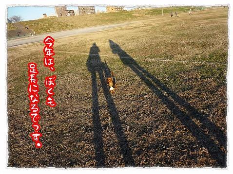 2013_1_8_5.jpg